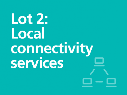 Lot 2: Local connectivity services