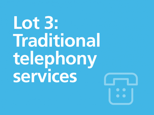 Lot 3: Traditional telephony services
