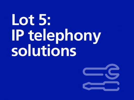 Lot 5: IP telephony solutions