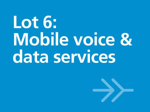 Lot 6: Mobile voice & data services